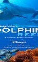 Dolphin Reef Türkçe Altyazılı 2020 Filmi izle