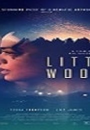 Little Woods Türkçe Dublajlı izle